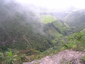 The Cloud Forest, Ecuador